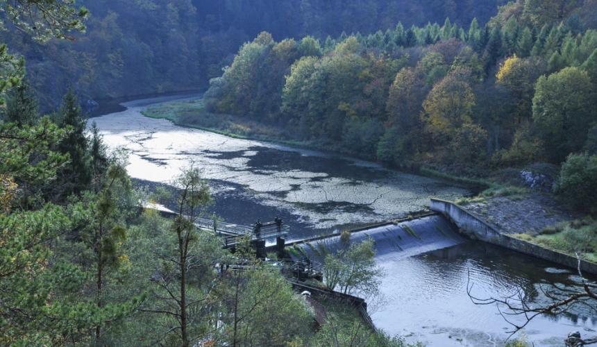 Das Kamp-Kraftwerk Rosenburg: die EVN will das Kraftwerk im Natura 2000-Schutzgebiet Kamptal neubauen und redet Umweltauswirkungen klein © Riverwatch