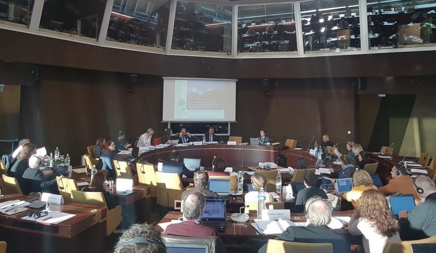 At the meeting of the Standing Committee, Council of Europe Strasbourg: Ana Colovic-Lesoska (Eco-sense) presents the Mavrovo case © Aleksandra Bujaroska