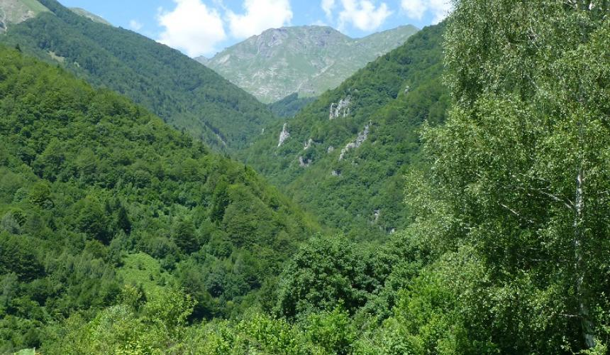 One of the intake points for HPP Ribnichka is planned in this valley © Theresa Schiller