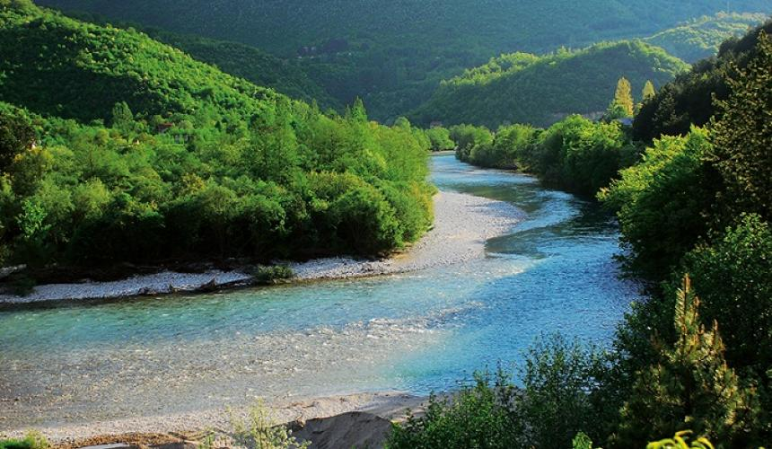 The Neretva and its tributaries in Bosnia-Herzegovina is one of the most important fish hotspots in the Balkans and in Europe. No fewer than 17 endangered and protected species live here. The EU is considering to support the construction of two large scale dams in this river. This would have devastating consequences, e.g. for the endangered Softmouth trout. © A. Vorauer