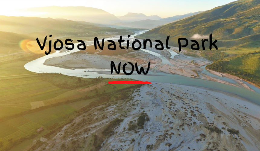 We call on the Albanian government to act on their promise and create the Vjosa Wild River National Park © Gregor Subic