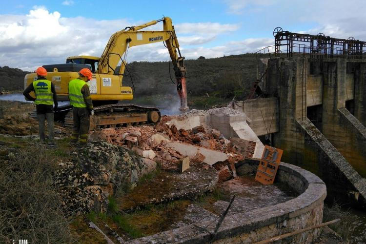 The removal of the 22 meters high Yecla de Yeltes dam on the Huebra River began in April 2018.  27 Km of river were reconnected, benefitting endangered fishes, otters, turtles and many other species. © Hermann Wanningen