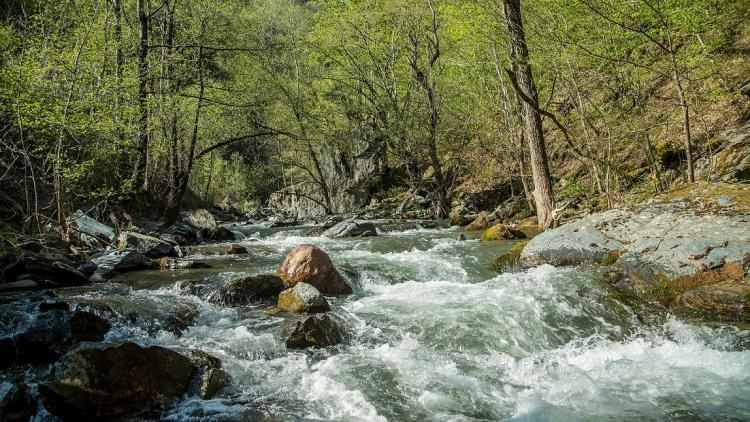 Neretvica: 15 hydropower plants are projected along this pristine river. With the decision in the Federation of BiH all these projects will be checked © Amel Emric
