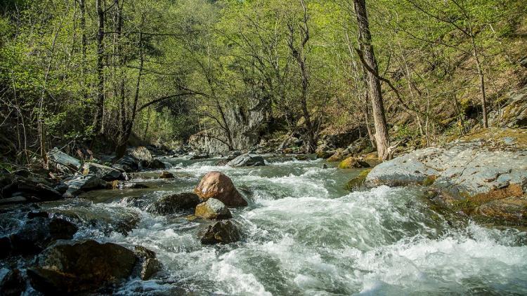 Neretvica: Entlang dieses unberührten Flusses sind 15 Wasserkraftwerke geplant. Mit der Entscheidung in der Föderation von Bosnien-Herzegowina werden all diese Projekte geprüft. © Amel Emric
