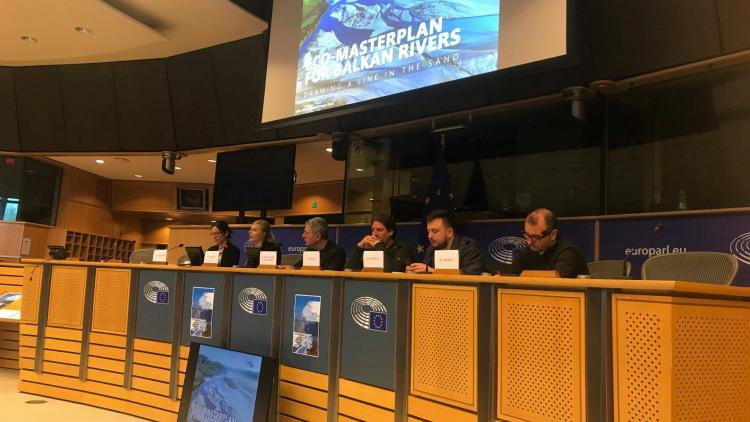 The Eco-Masterplan for Balkan Rivers presented in the European Parliament © Vasileios Katsardis