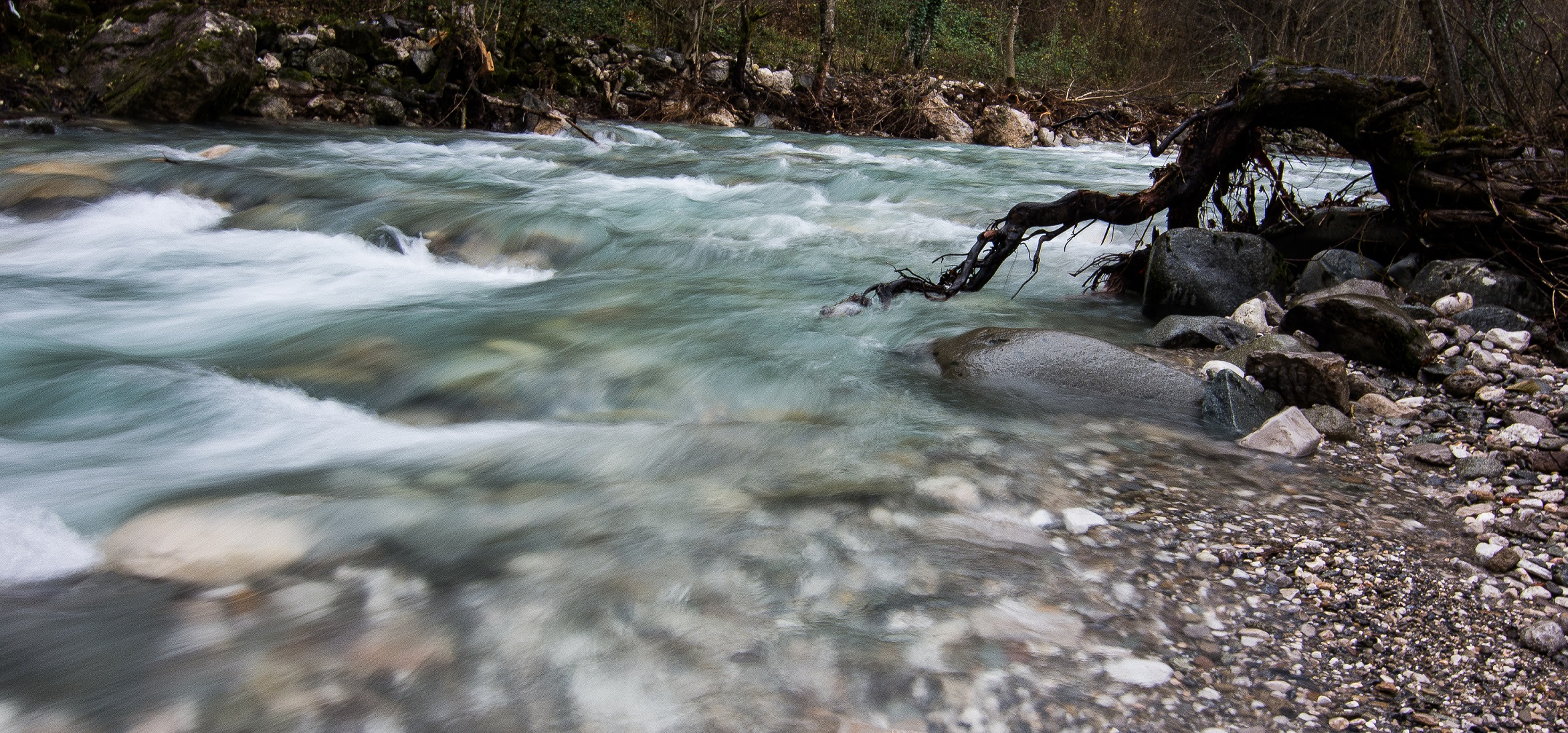 The Doljanka river in Bosnia and Herzegovina is at risk. Sign the petition! © Anes Podic