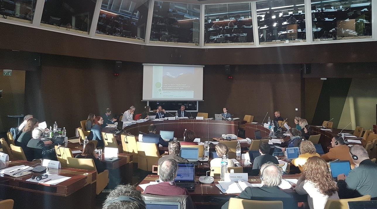 Ana Colovic-Lesoska (Eco-sense) präsentiert den Mavrovo-Fall in der Sitzung des Ständigen Ausschusses der Berner Konvention, Council of Europe Strasbourg © Aleksandra Bujaroska