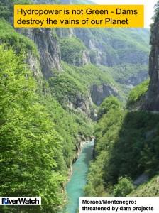 Montenegro Moraca