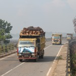 Yellow trucks transport the freshly harvested nuts to the huge oil press factories. Photo: Johanes Jenito