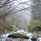 Der Fluss Raul Alb in Rumänien. Quelle: http://www.thepetitionsite.com/936/056/545/help-saving-the-last-undisturbed-river-in-romanian-carpathians/