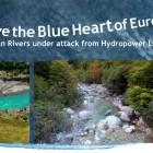 Titel_Blue Heart_Kampagnenbroschuere