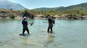 Wissenschaftler bei der Arbeit, hier bei der Elektrobefischung. Paul Meulenbroek/BOKU (rechts) und Sajmir Beqiraj/Uni Tirana. © Cornelia Wieser